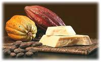 Какао-масло дезодорированное ОLAM (Нидерланды)