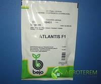 Семена огурца  Атлантис F1 50 гр, фото 1
