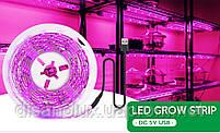 Фитолента для растений SMD 2835 60Led /м  5V 3м  IP20  Full Spectrum  USB, фото 2