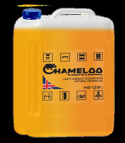 Профессиональное моющее средство для всех типов поверхностей CHAMELOO PROFESSIONAL, фото 2