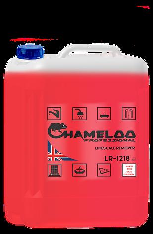 Концентрованное средство Chameloo Professional limescale remover для очистки от налета 5 l, фото 2