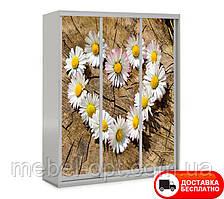 Шкаф купе 3Д трехдверный Цветы 16, выбор цвета корпуса и рисунка