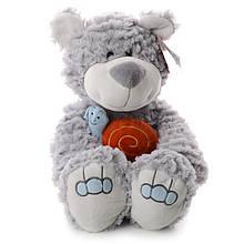 Медвежонок IF71