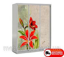 Шкаф купе 3Д трехдверный, Цветы 21 выбор цвета корпуса и рисунка