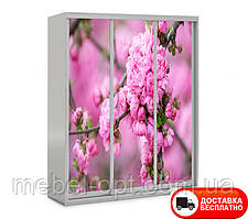 Шкаф купе 3Д трехдверный, Цветы 22 выбор цвета корпуса и рисунка