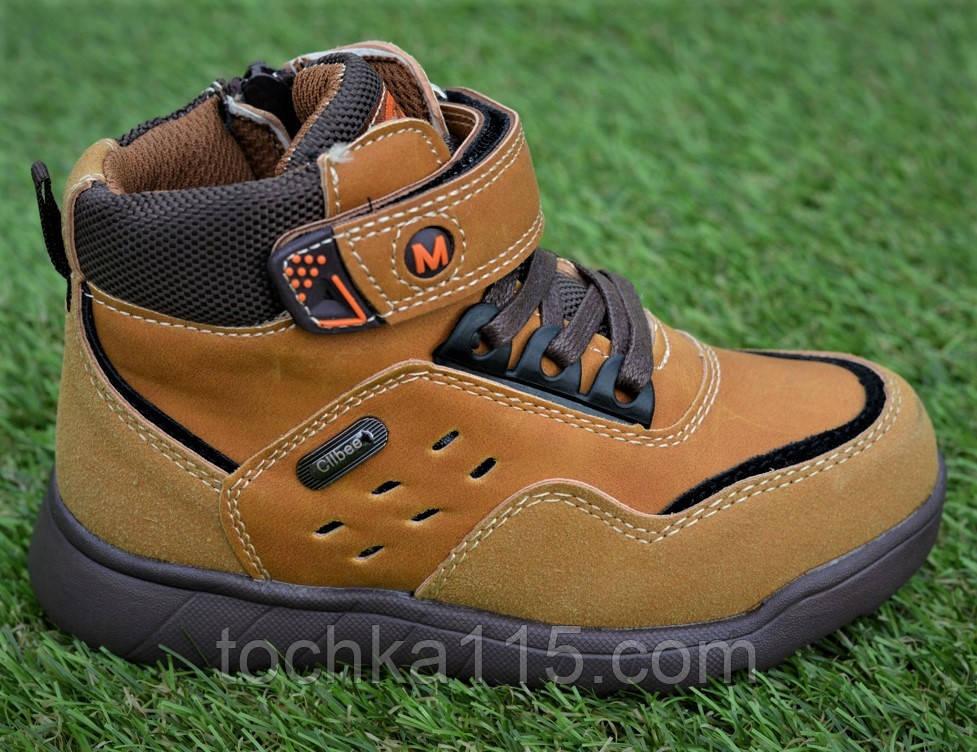 Детские демисезонные ботинки clibee для мальчика коричневые р26-31