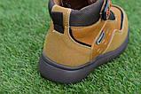 Детские демисезонные ботинки clibee для мальчика коричневые р26-31, фото 2