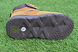 Детские демисезонные ботинки clibee для мальчика коричневые р26-31, фото 3