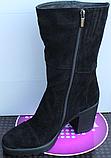 Сапоги женские замшевые на байке от производителя Ф127, фото 3