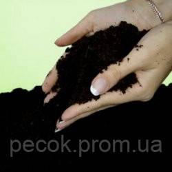 Чернозем в Одессе