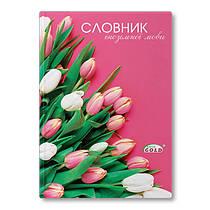 Зошит-словник для запису іноземних слів Brisk ТСВ-6 56 листів тверда серія:9664-2