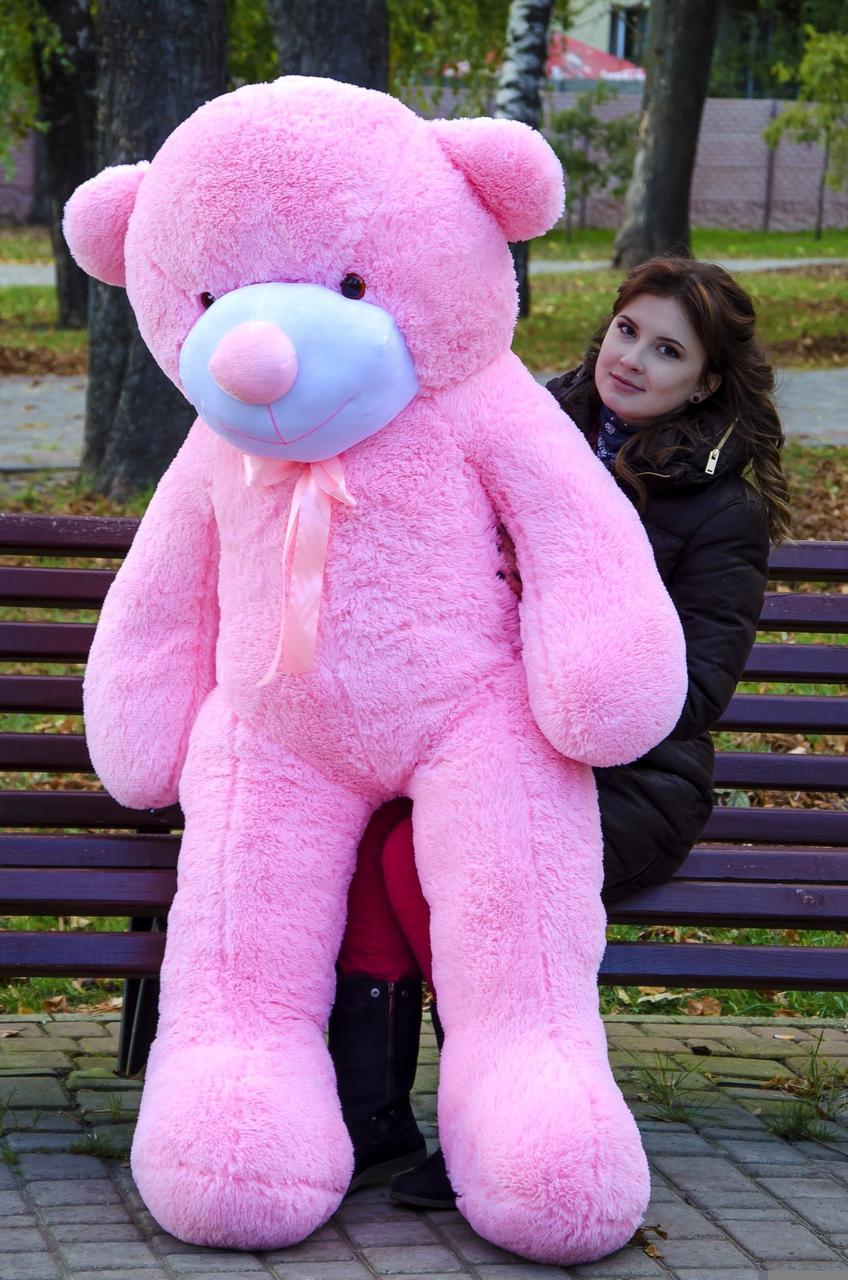 Плюшевий ведмедик Рафаель 180 см Рожевий. Плюшевий ведмідь Рафаель 180 див. Плюшева іграшка