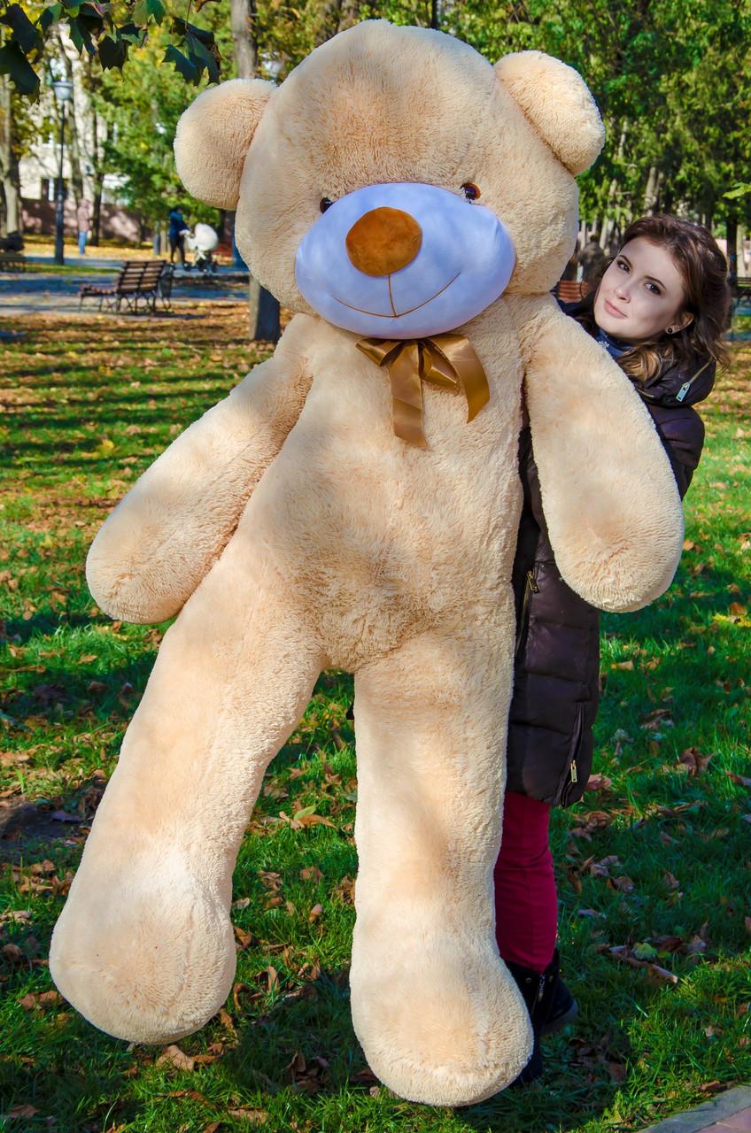 Плюшевий ведмедик Рафаель 200 см Бежевий. Плюшевий ведмідь Рафаель 200 див. Плюшева іграшка