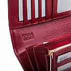 Жіночий шкіряний гаманець Betlewski з RFID 18,5 х 9,5 х 3,5 (BPD-CR-100) - червоний, фото 3