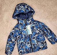 Куртка демисезонная для мальчика, фото 1