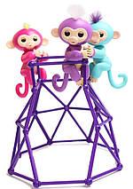 """Интерактивная игрушка """"Fingerlings Jungle Gym PlaySet + интерактивная обезьянка, фото 2"""