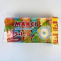 Губка кухонна для посуду «Максі» 5+1