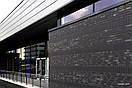 Клінкерні Цегла Roben NF (Польща) Portland Антрацит Гладкий, фото 2