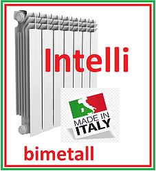 Биметаллический радиатор отопления Intelli 500 х 100 Italy