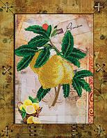 """Набор для вышивания на пластиковой основе с перфорацией """"Натюрморт. Лимон"""""""