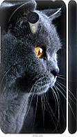 "Чехол на Meizu M3 Note Красивый кот ""3038c-256-21792"""