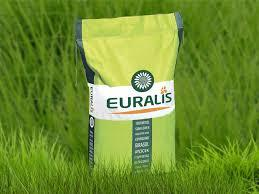 Семена подсолнечника Белла Евралис (Euralis)