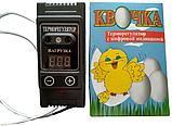 """Терморегулятор для інкубатора цифровий """"Квочка"""", фото 3"""