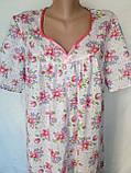 Ночная рубашка с коротким рукавом 64 размер Герберы, фото 8