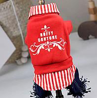 Зимний комбинезон зимняя одежда для собак