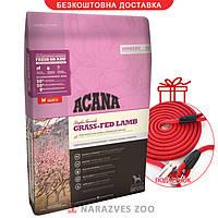 Сухой корм Acana Grass-Fed Lamb 17кг + Поводок-контроллер в подарок