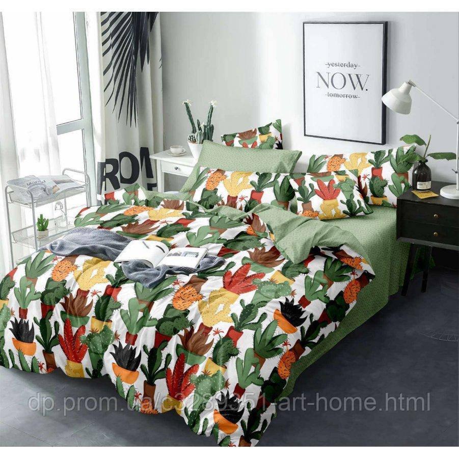 Двуспальное постельное белье Бязь Gold - Веселые кактусы