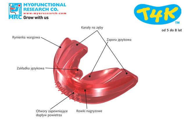 Преортодонтический трейнер Т4К розовый Hard (жесткий) Строение аппарата.
