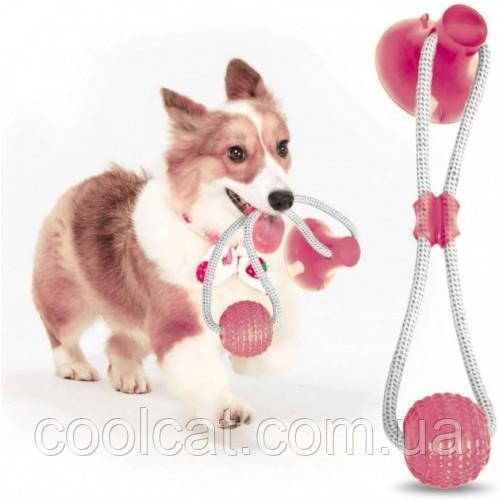 Игрушка для домашних животных с присоской + Подарок Лапомойка! Dog toy rope PULL