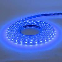LED лента VOLGA 220V IP65 SMD5050 60LED/m 6W/m синяя HOROZ ELECTRIC