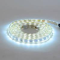 LED лента VOLGA 220V IP65 SMD5050 60LED/m 6W/m 4200K HOROZ ELECTRIC