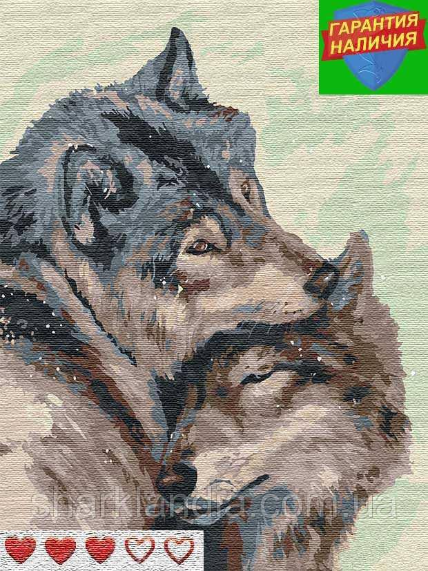 Картина по номерам Пара волков (цветной холст) Барви 40*50см Розпис по номерах
