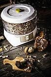 Сушильный аппарат для мяса, грибов, фруктов и трав Adler AD 6654, фото 4