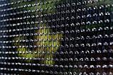 Батут садовий Fun Fit спортивний 8 (244-252 cm) 252 см з подушкою і сходами, фото 3