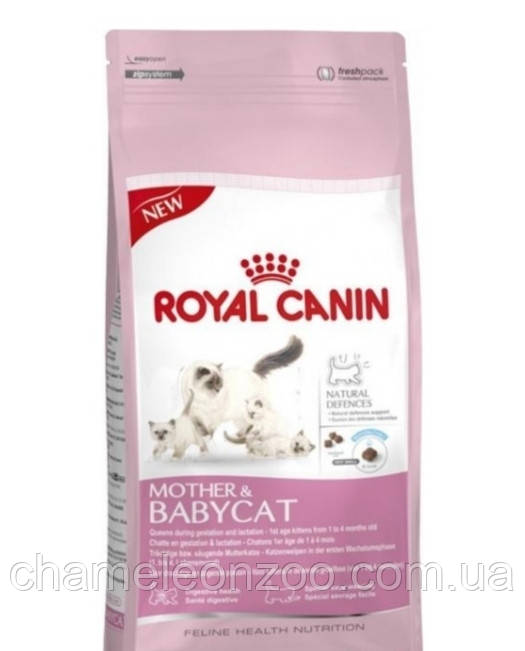 Royal Canin Mother and Babycat 34 2 кг - корм для беременных кошек и  котят от 1 до 4 месяцев