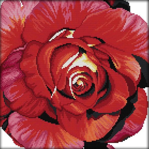 Набір для вишивання хрестом 33х33 Троянда Joy Sunday H383