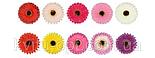 Искусственные цветы  подсолнух цветной, 51см (10 шт. в уп), фото 3