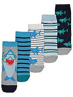 Набір дитячих шкарпеток 5 пар Акулки Джордж для хлопчика
