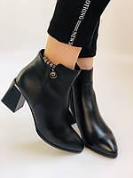 Женские ботинки. На среднем каблуке. Натуральная кожа.Высокое качество. Nadi Bella. Р. 35-40.Vellena, фото 3