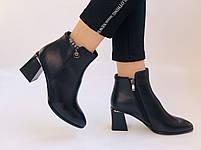 Женские ботинки. На среднем каблуке. Натуральная кожа.Высокое качество. Nadi Bella. Р. 35-40.Vellena, фото 2