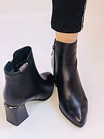 Женские ботинки. На среднем каблуке. Натуральная кожа.Высокое качество. Nadi Bella. Р. 35-40.Vellena, фото 8