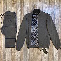 Мужской брендовый спортивный костюм Stefano Ricci P0493 серый