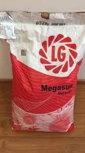 Насіння соняшнику Лімагрейн Мегасан (Limagrain Megasun)