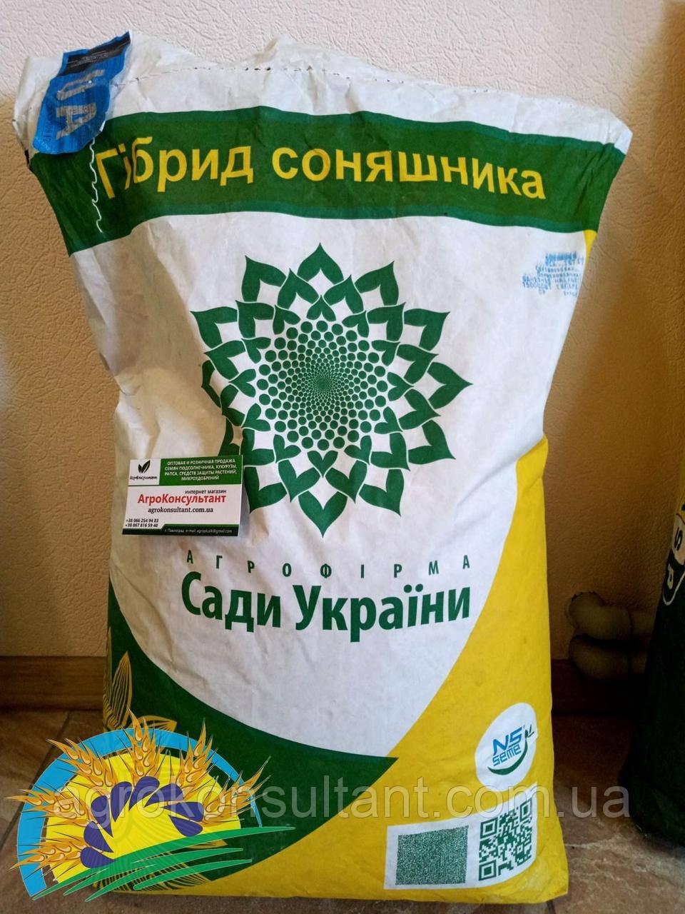 НС Х 26749 (Латитуда) (экстра, урожай 2019 года, Укр.) 8,3кг - семена подсолнечника (150000 шт). СУ