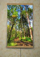 Настенные карбоновые пленочные обогреватель-картина Хвойный лес