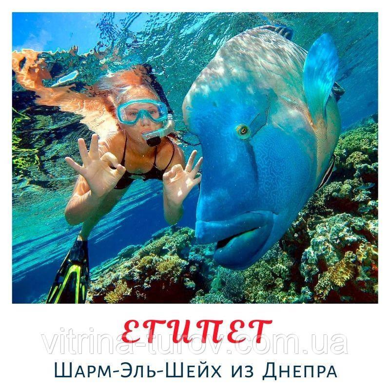 ЕГИПЕТ из Днепра - цены на ближайший рейс!
